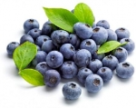 'Blueberry' comme protection cardiovasculaire